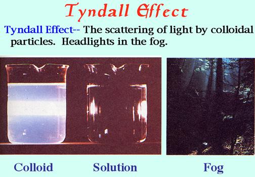 external image tyndall.jpg
