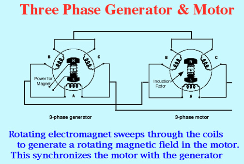 Induction Motor Wiring Diagram Three Phase on 3 phase motor winding diagrams