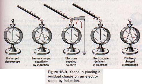 Charging by Induction Electroscope Charge by Induction
